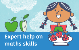 Expert help on maths skills